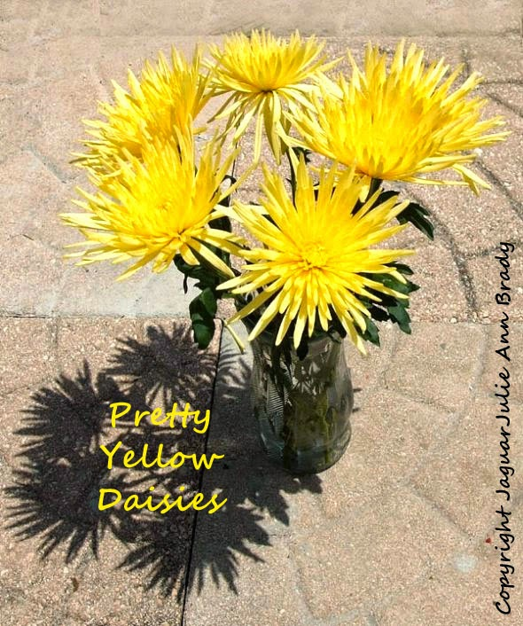 pretty yellow daisies in a vase