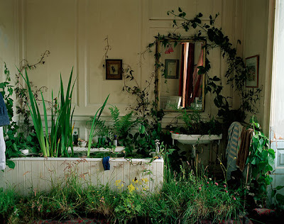 Tim Walker - inside/outside,2002