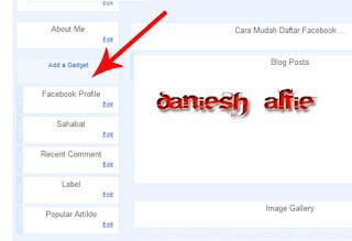 Cara Menampilkan Gambar Profile Facebook Di Blog