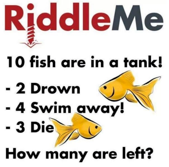 Almost NO ONE Could Solve This Riddle. Are You Able To Outsmart The Rest?