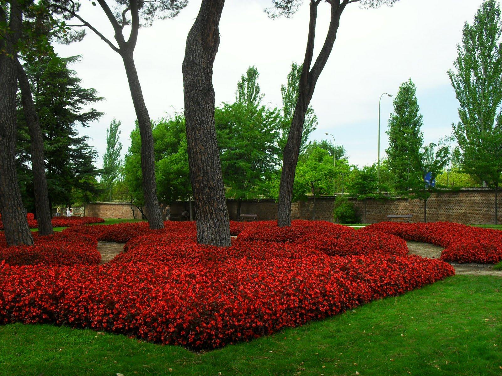 Arte y jardiner a jardin el capricho for Paginas de jardineria