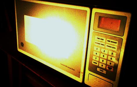 ELECTROPHYSICS  Metal inside microwave    oven