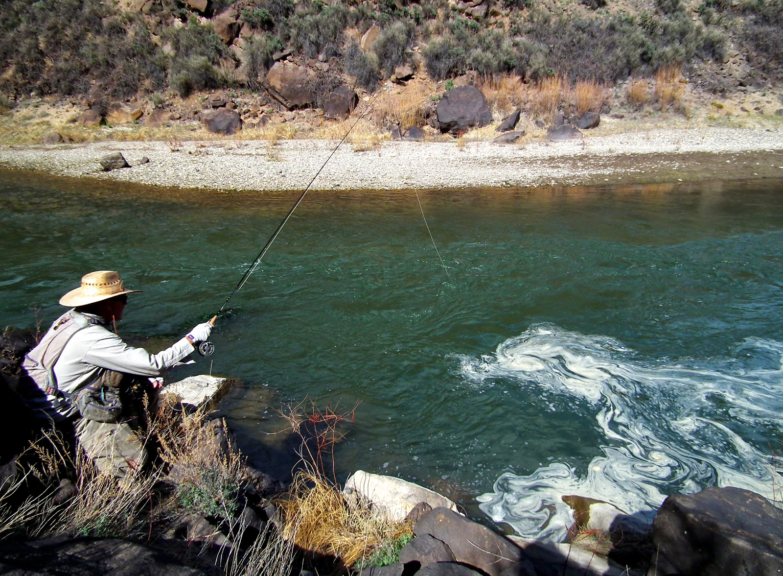 Licensed to fish fishing new mexico 39 s spring caddis hatch for Fishing new mexico