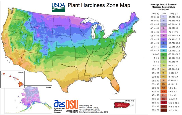 A guide to northeastern gardening zone maps for Forest garden design zone 4