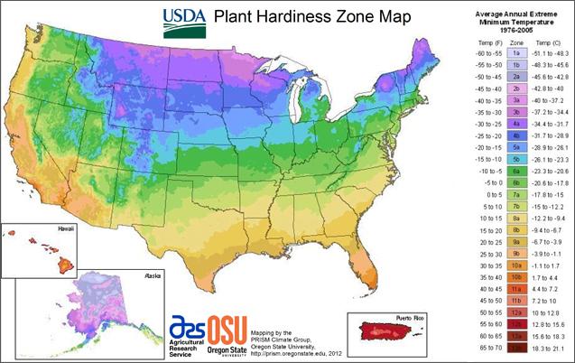 A guide to northeastern gardening zone maps for Garden design zones