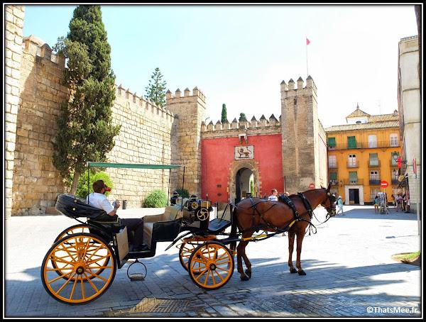 Séville Real Alcazar entrée calèche touristes Palais