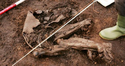 Irish 'bog body' may be world's oldest