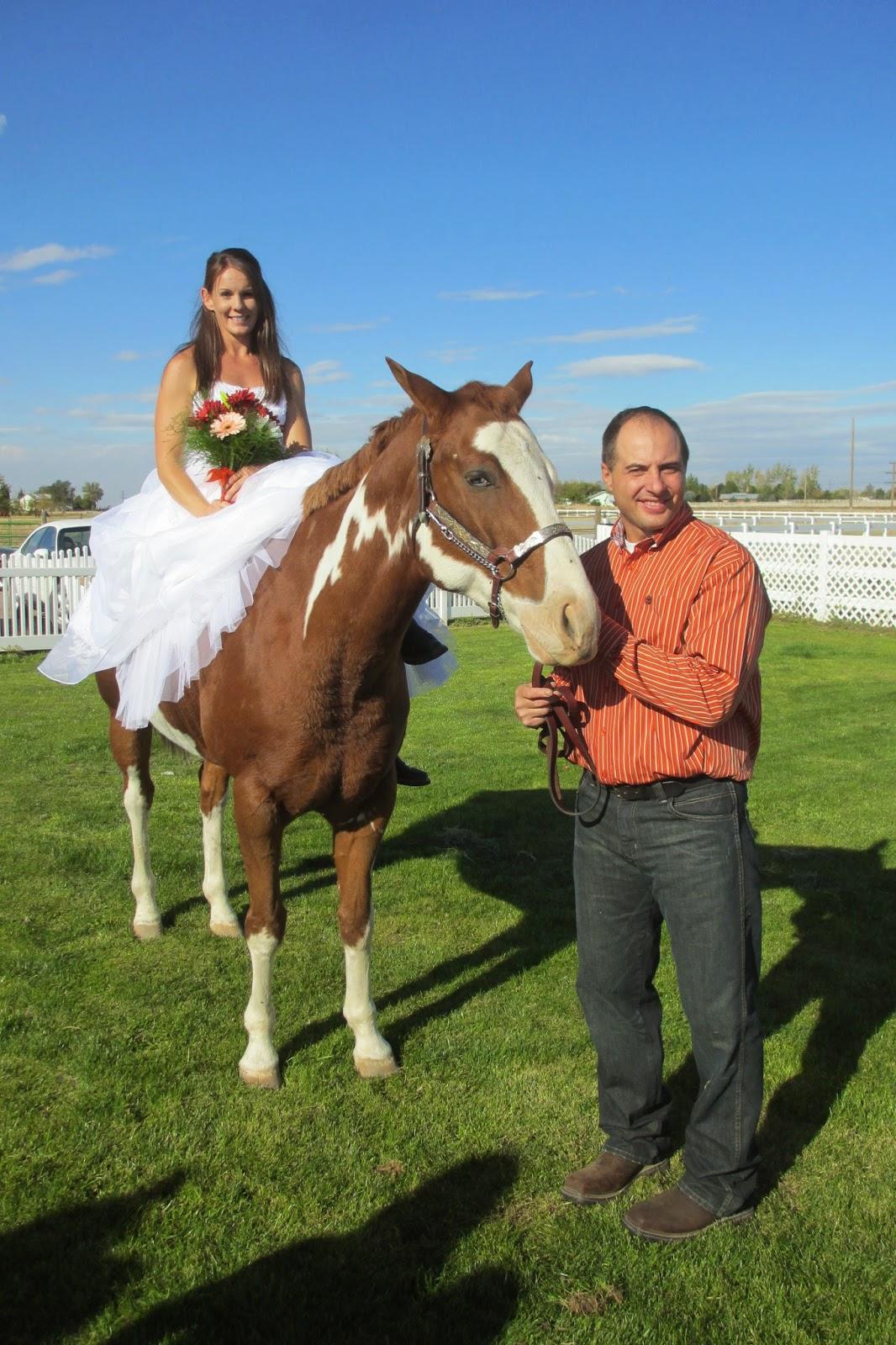 Shauna connolly wedding