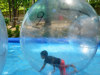 bubble ball in children's grand park, seoul