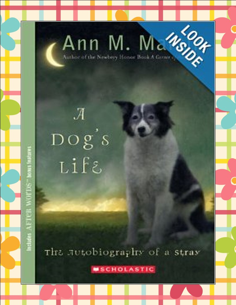 http://www.amazon.com/A-Dogs-Life-Autobiography-Stray/dp/0439717000/ref=sr_1_1?ie=UTF8&qid=1392555200&sr=8-1&keywords=a+dog%27s+life