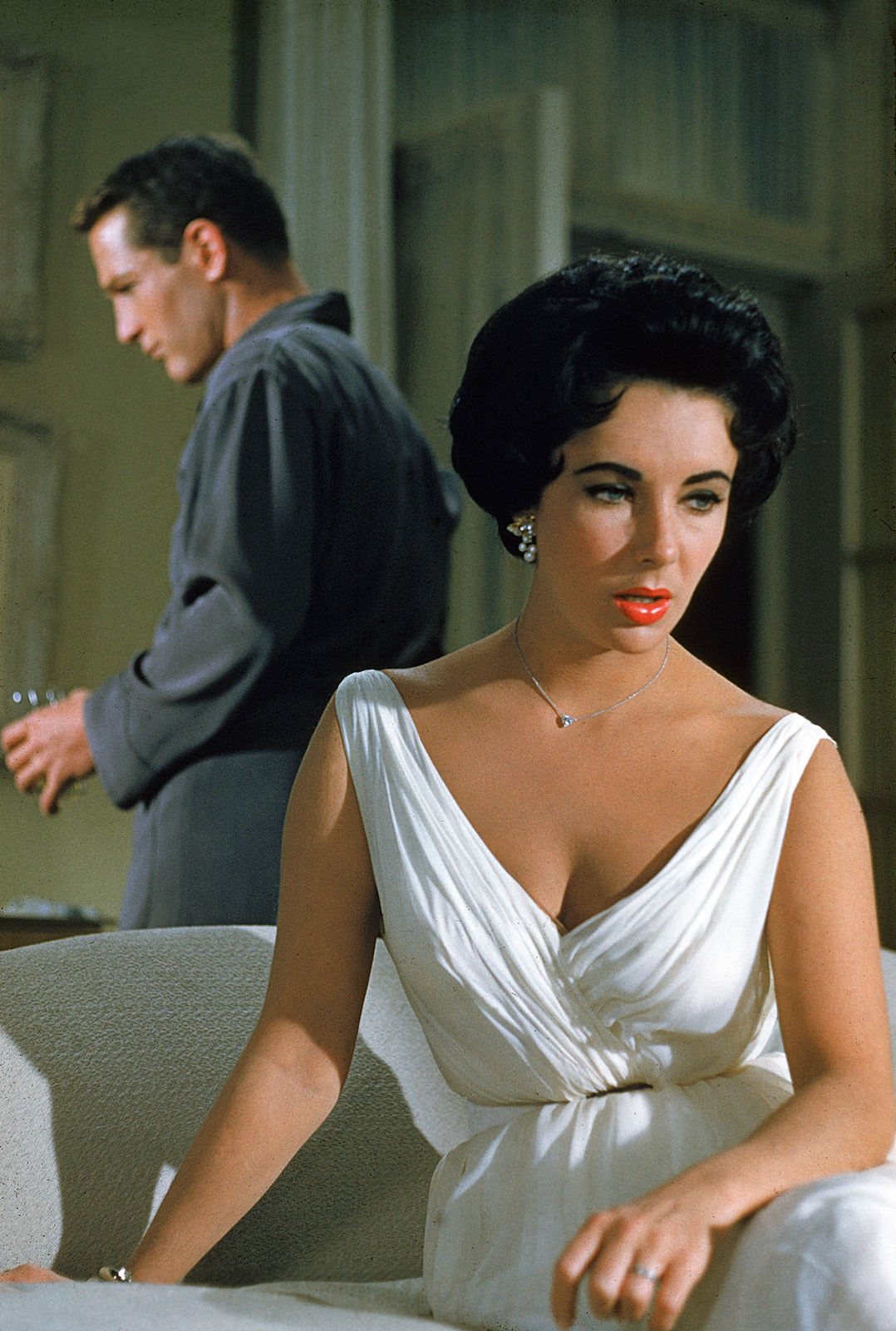 cat on a hot tin roof essay similarities between cats and dogs  crazy film guy cat on a hot tin roof