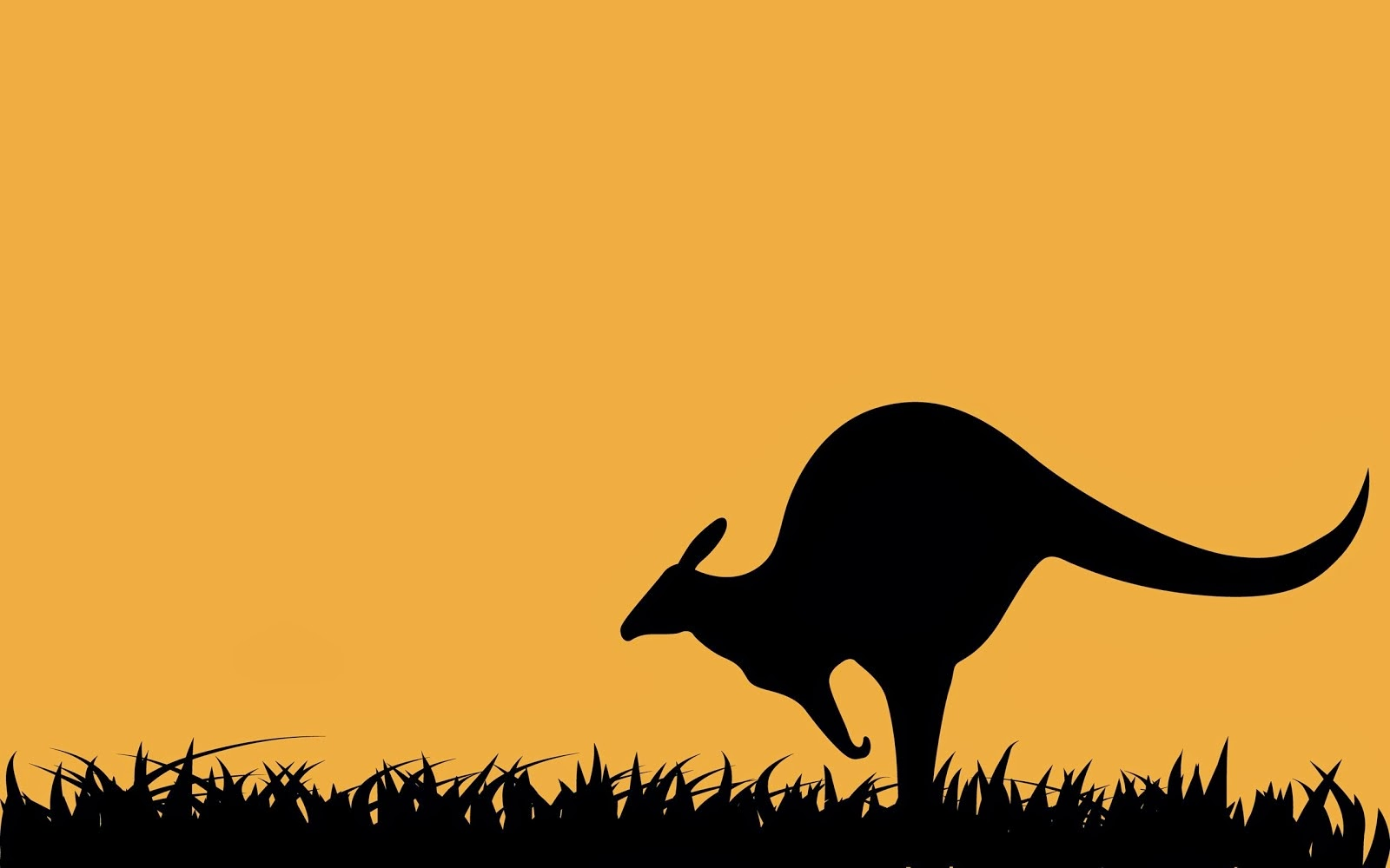 Kangaroo Cartoons and Comics  funny pictures from