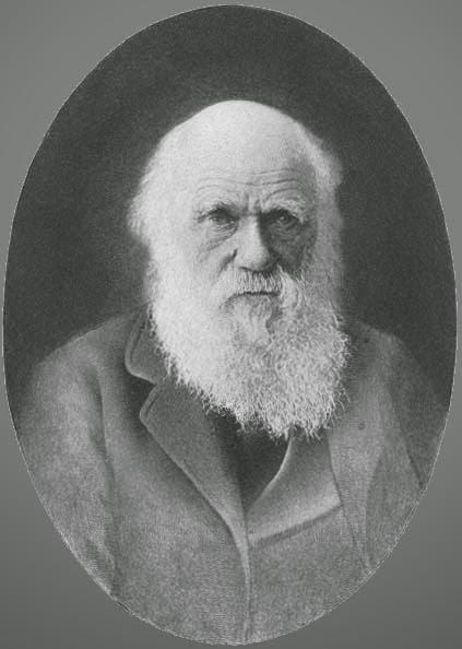 Charles Robert Darwin ( 1809 - 1873 )