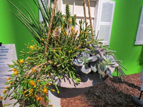 Philadelphia Flower Show 2015 Window Box and Lamp Post: John Wayne