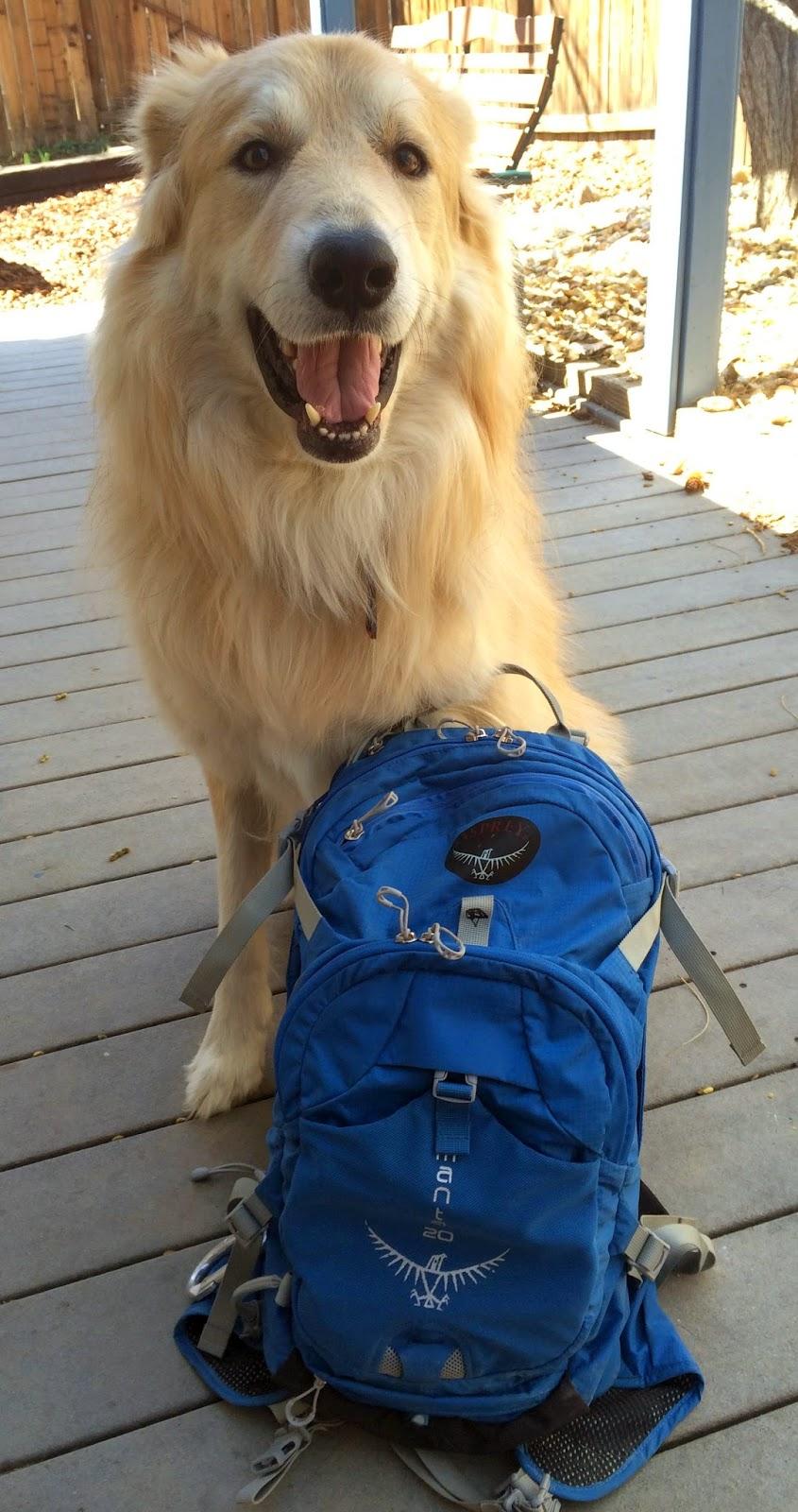 Osprey Manta 20 Hydration Pack and Dog