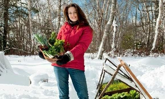 Niki Jabbour The Year Round Veggie Gardener