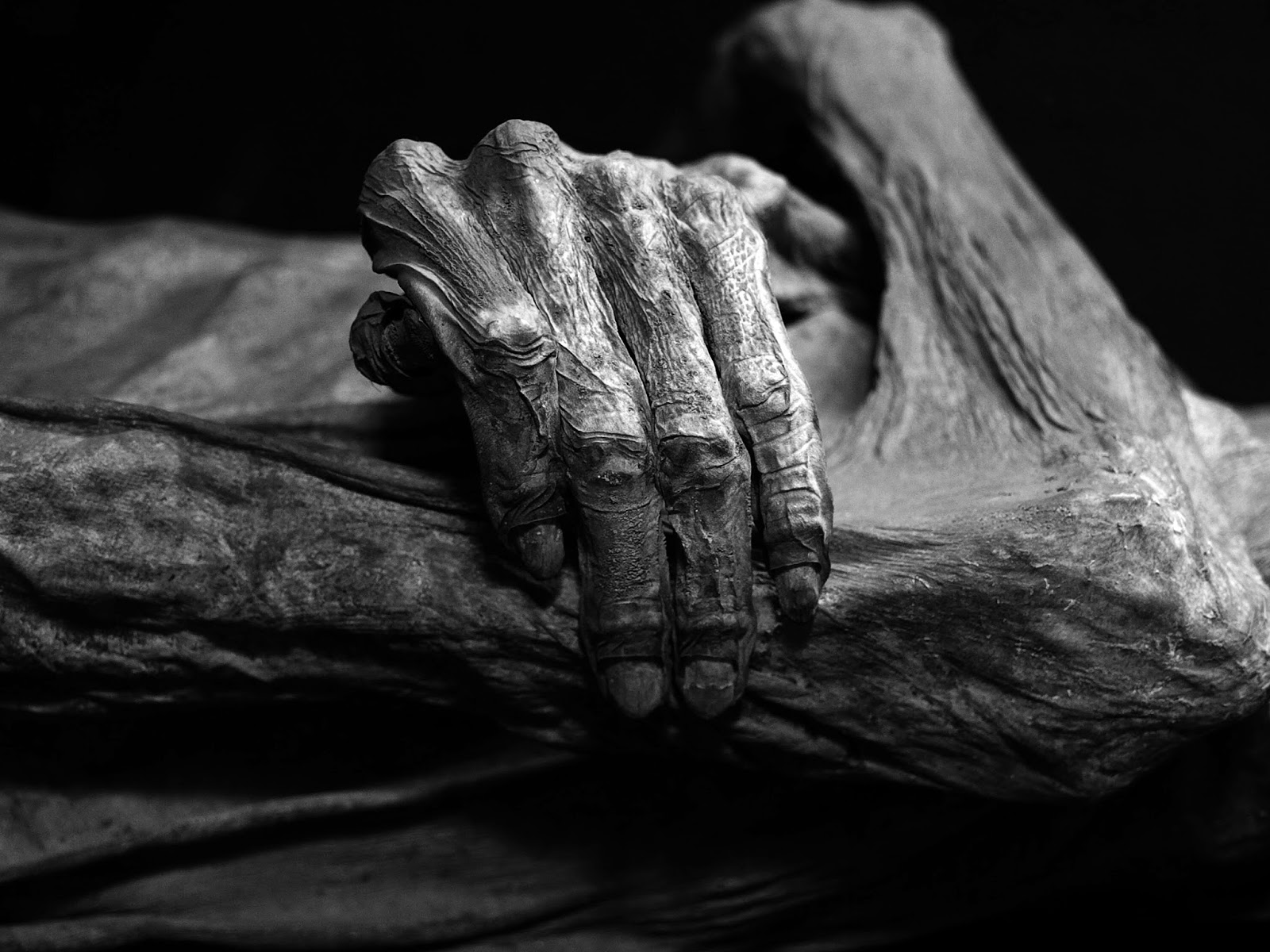 8 Things You Didn't Know About Death