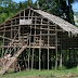 "Semakin Ditinggalkan, Rumah ""Mod Aki Aksa"" di Pegunungan Arfak Butuh Pelestarian"