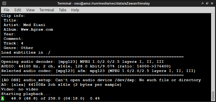 mplayer in terminal