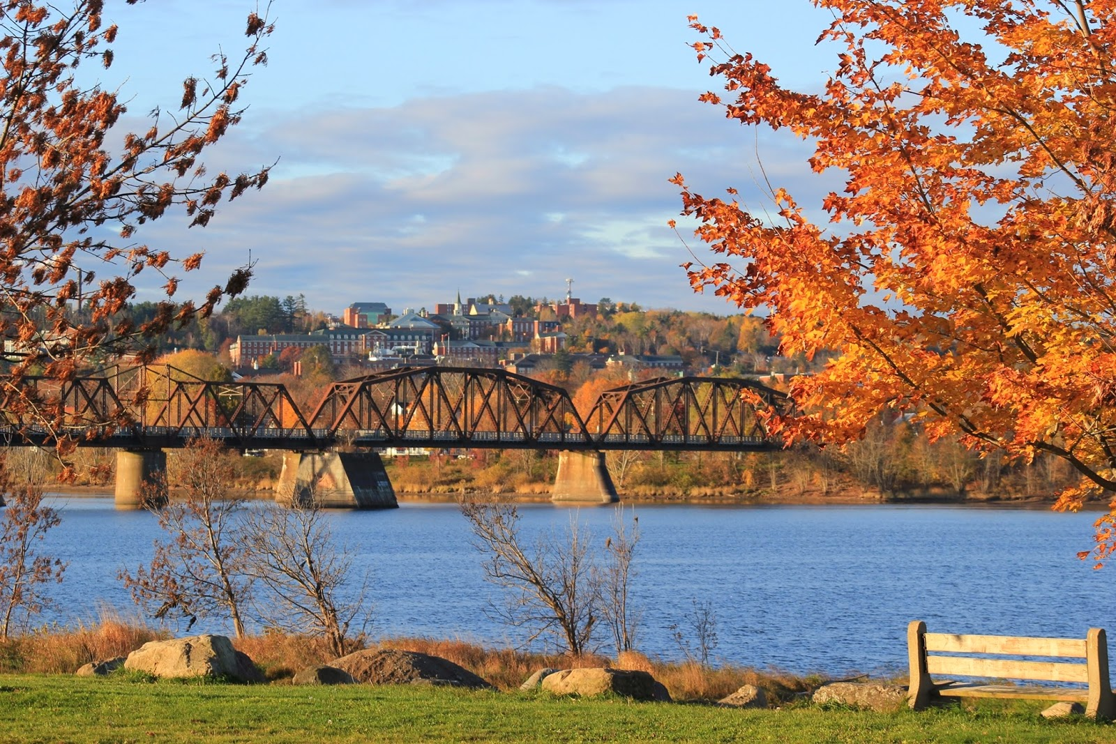 Image result for fredericton fall