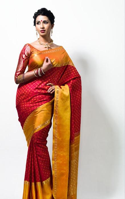gayathiri wonderful saree ad collections 2012 actress pics