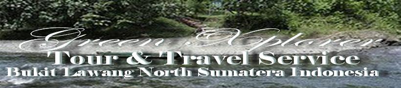 Animal Trek Bukit Lawang l Green Xplorer l North Sumatera l Indonesia