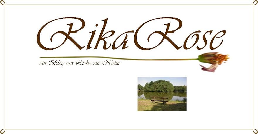 RikaRose