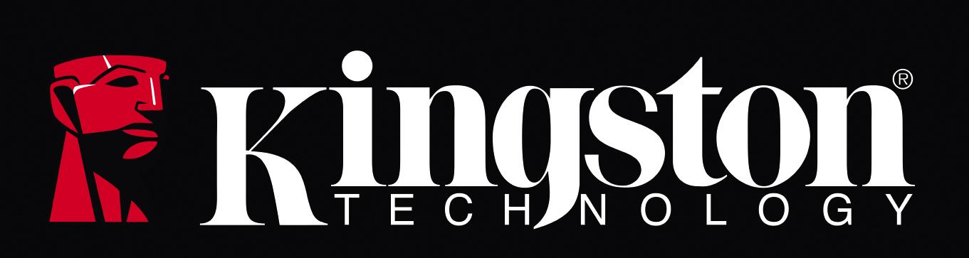 Resultado de imagen para logo kingston