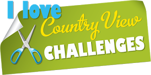 Countryviewchallenges