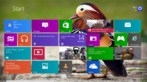 Mandarin Duck Theme For Windows 7 And 8