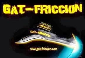 Gat-Friccion