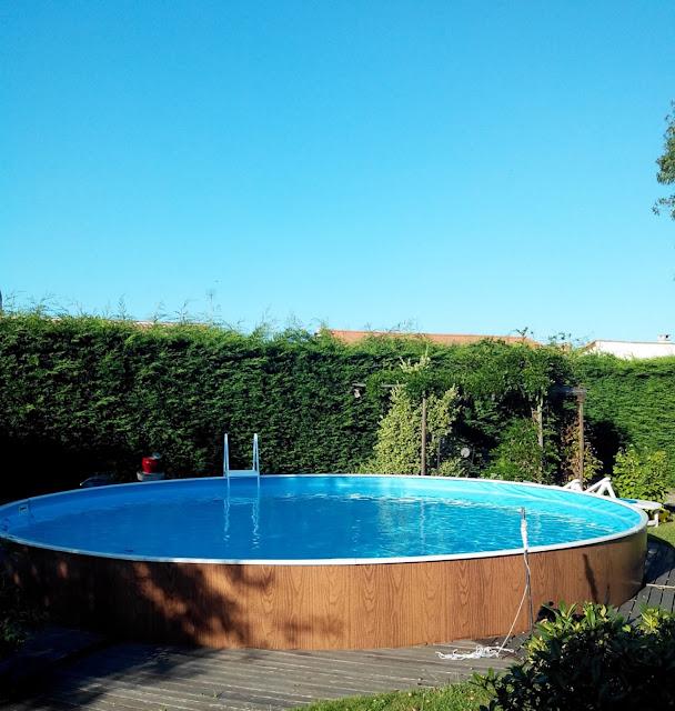 jardin, piscine, bullelodie