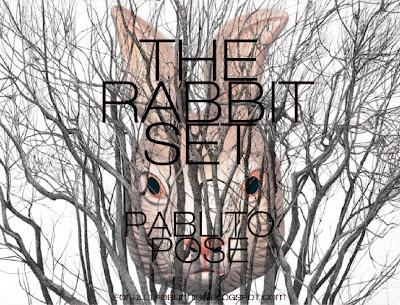 http://www.mixcloud.com/pablito_pose/the-rabbit-set/