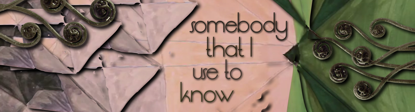 Somebody that I used to know, Gotye, music video, art, artist