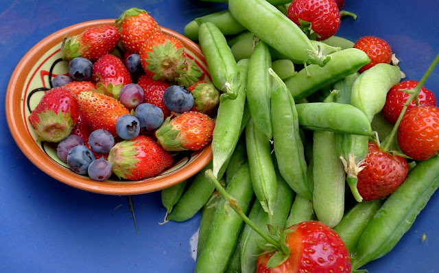 Summer Harvest berries and peas