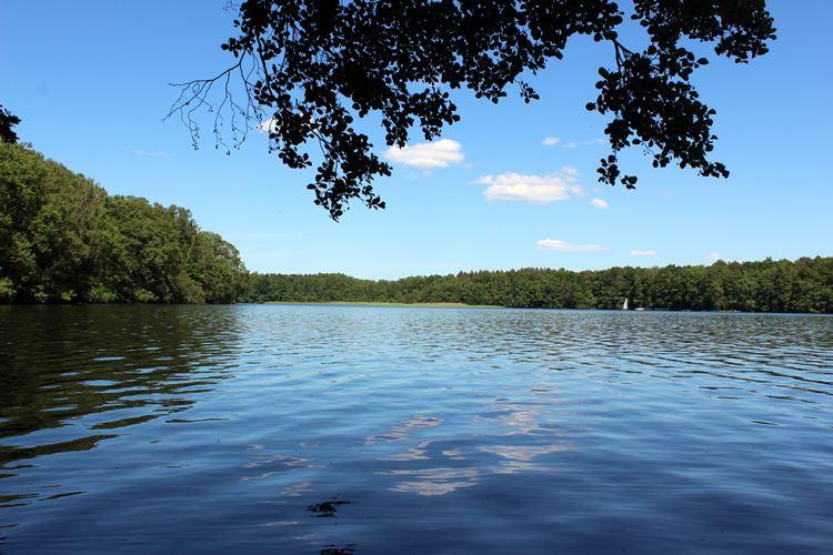 Ausblick See
