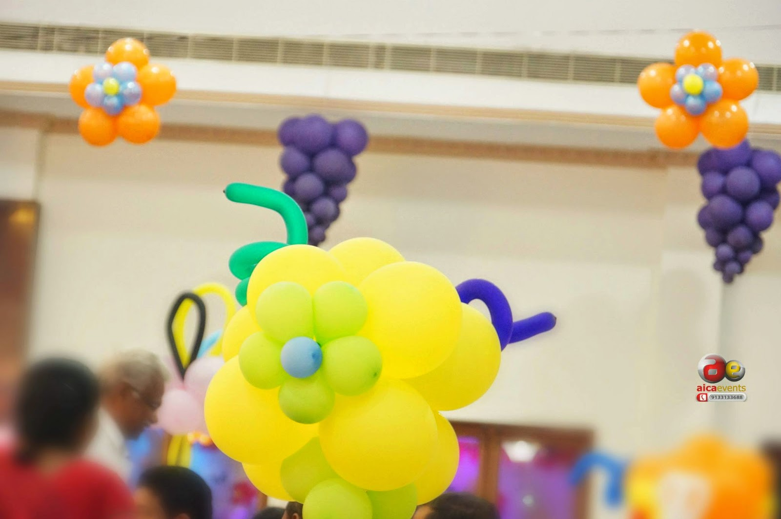 Aicaevents India: Princess Theme Birthday Decorations