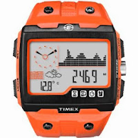 Timex Expedition WS4 Widescreen 4-Function Watch