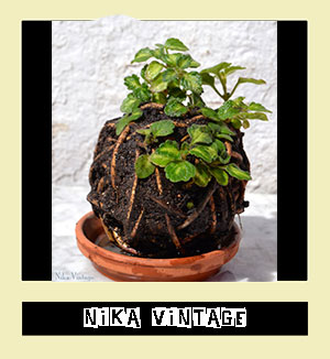 http://www.nikavintage.com/2014/04/diy-falsa-kokedama.html
