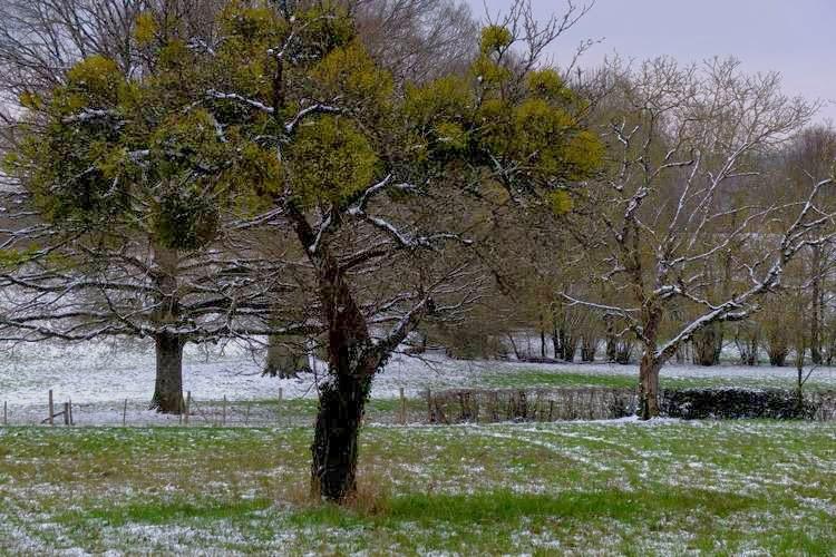 L'hiver est déjà là