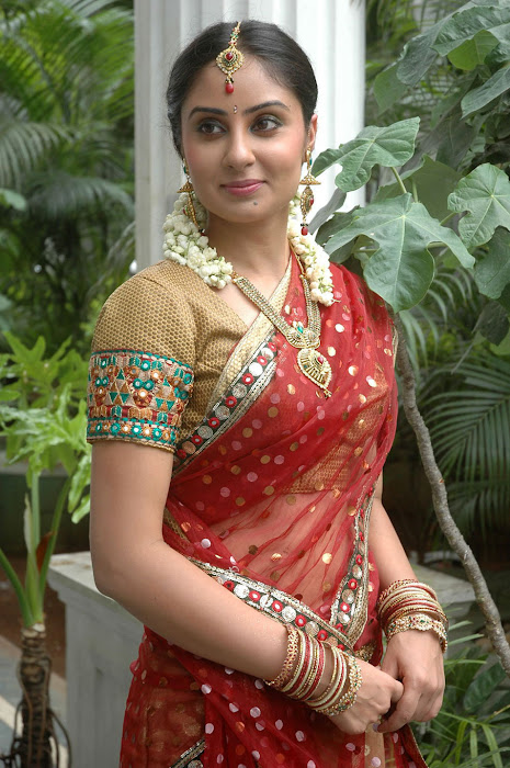 bhanu sri mehra from prematho cheppana, bhanu mehra new actress pics