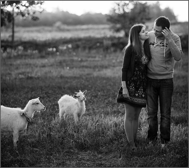 gražios vestuvių nuotraukos su gyvūnais