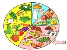 Alimento combustible para la vida elementos b sicos para la vida - Alimentos que contienen silicio ...