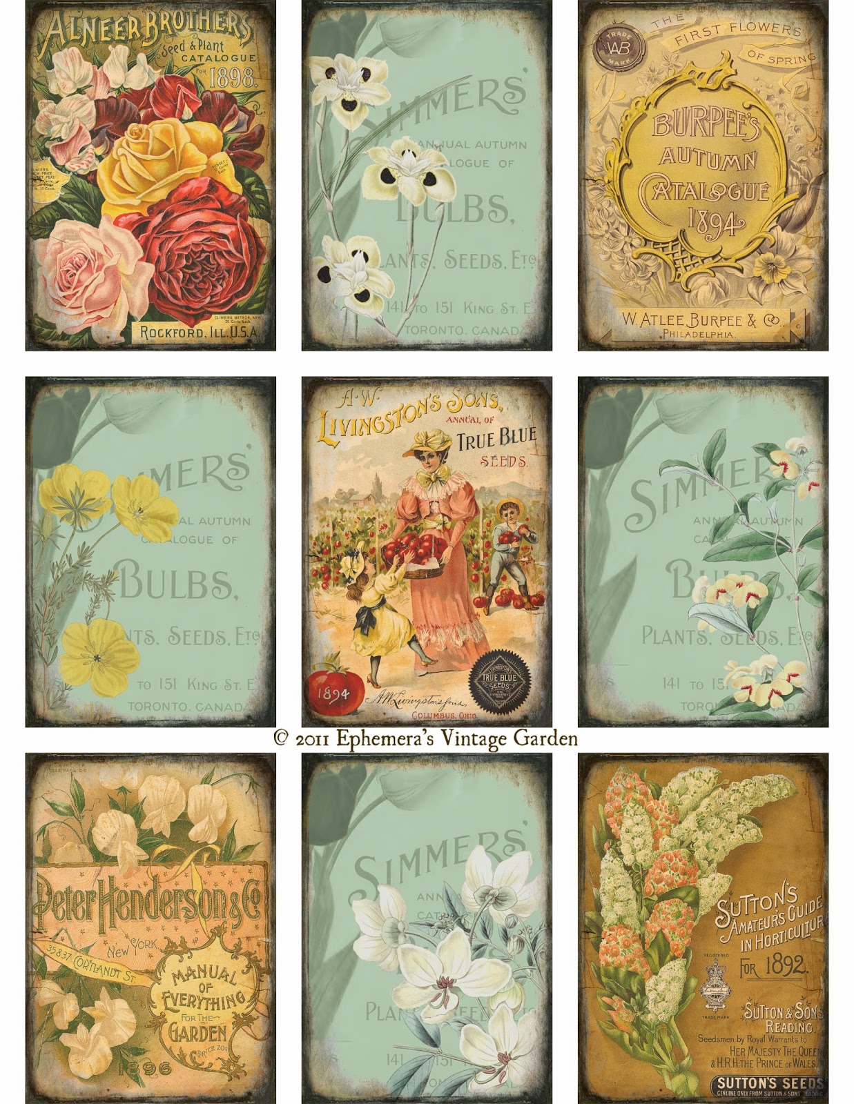 It is a picture of Bright Free Vintage Printables