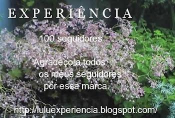 EXPERIÊNCIA - 100 Seguidores