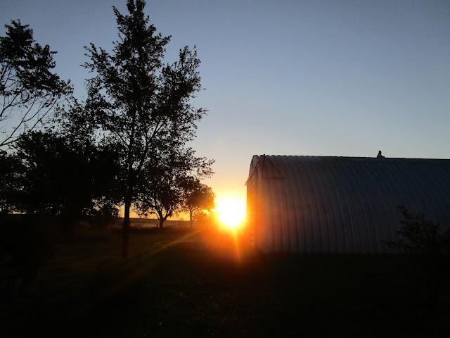 Autumn on the Farm courtneylthings.blogspot.com