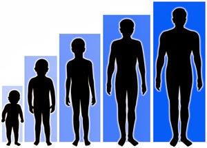Tips cara menambah tinggi badan