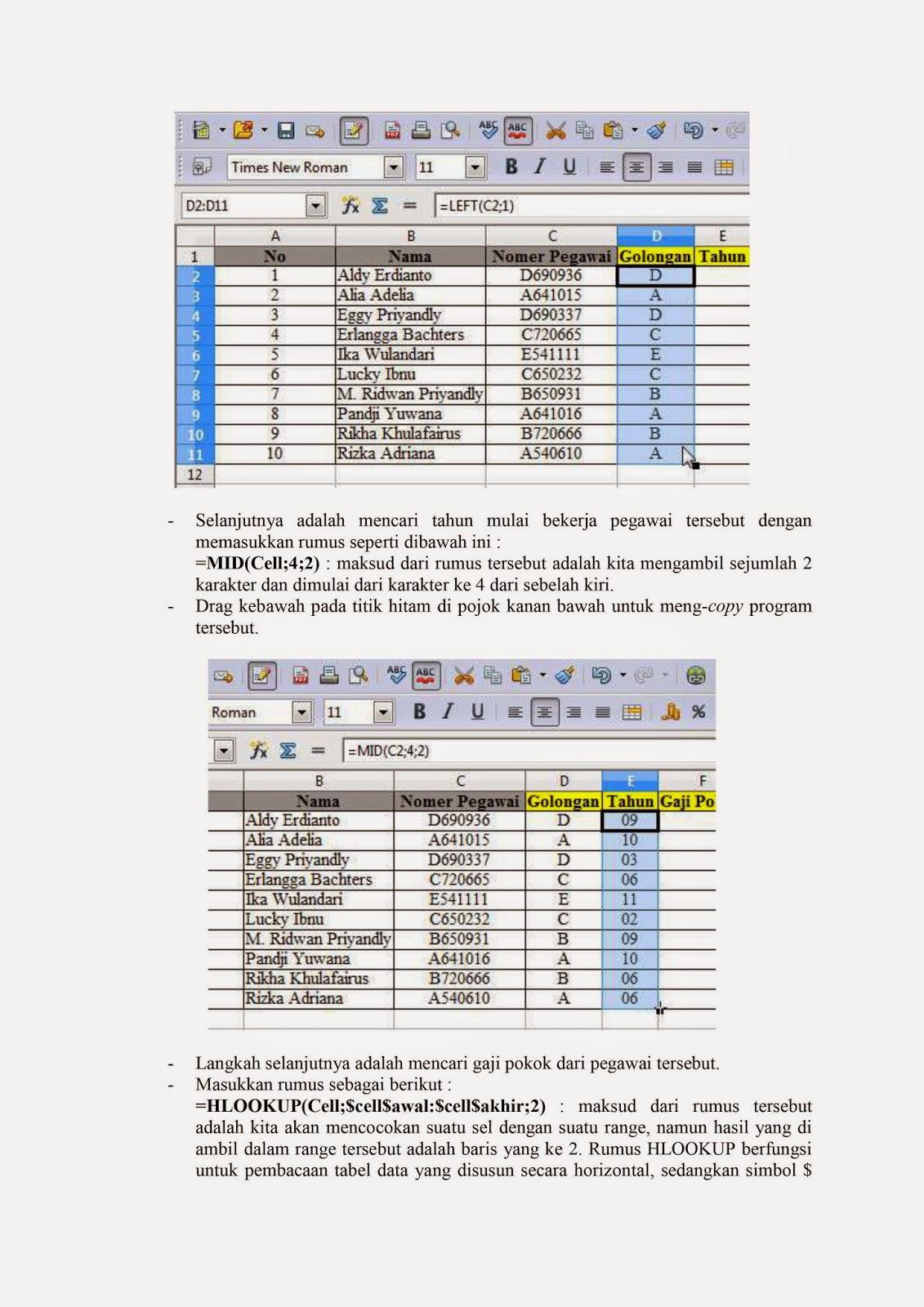 open office calc, laporan akhir, gunadarma, calc