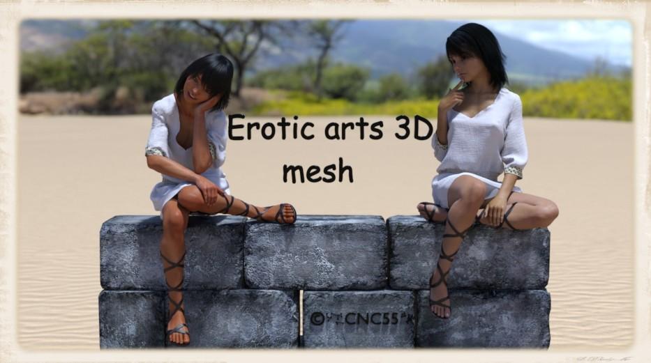 Erotic arts 3D mesh