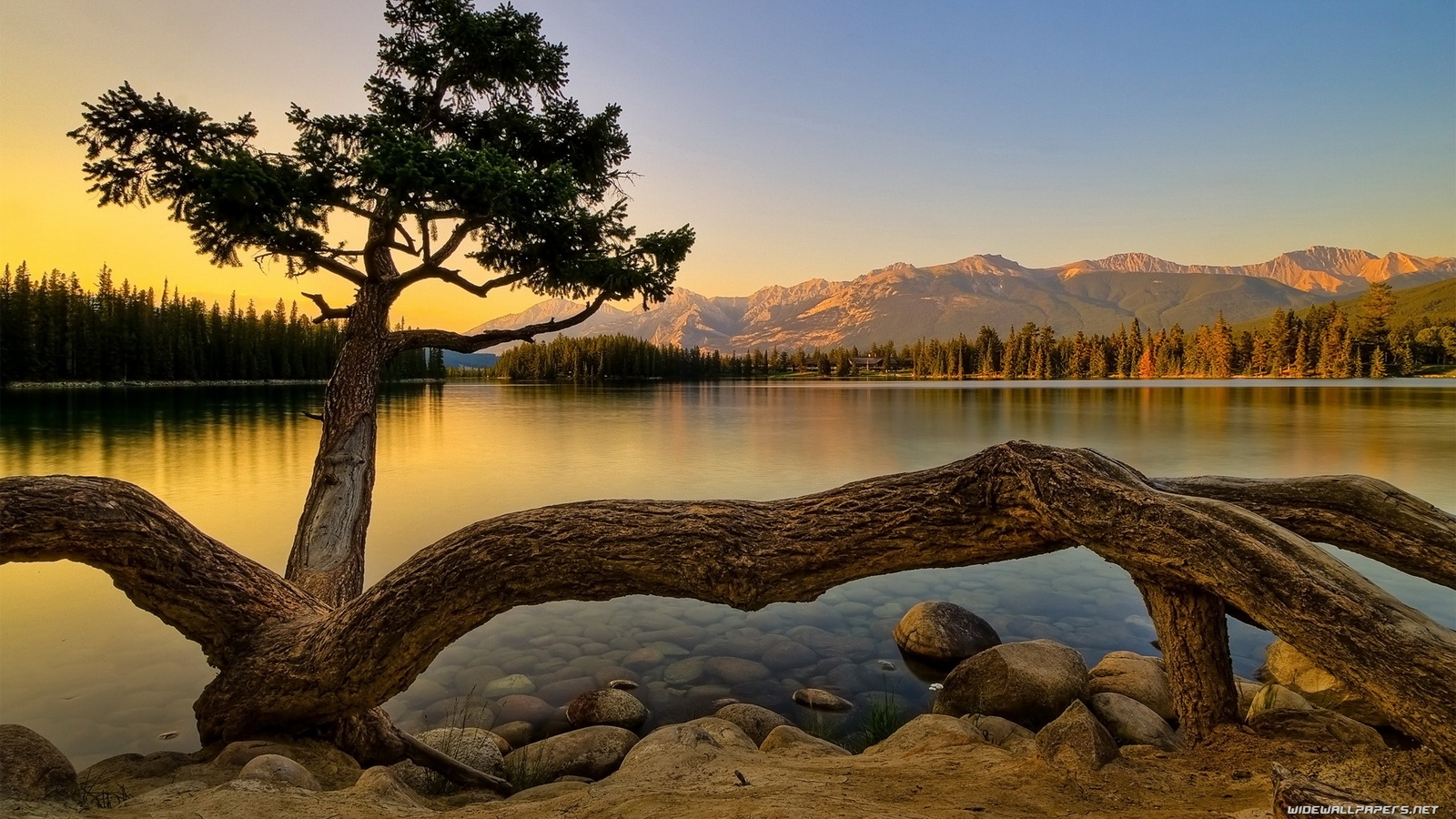 http://2.bp.blogspot.com/-EC0xUAyvrLg/T3kWPtMHRiI/AAAAAAAAArw/iWEvQskxP28/s1600/nature-wallpaper-1600x900-007.jpg